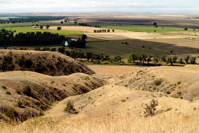 Little-Bighorn