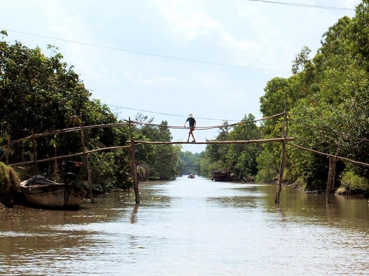 Monkey Bridges /Małpie mosty/ w Wietnamie