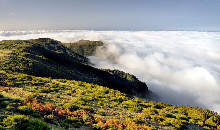 Lomba de Risco - Wyspa Madera
