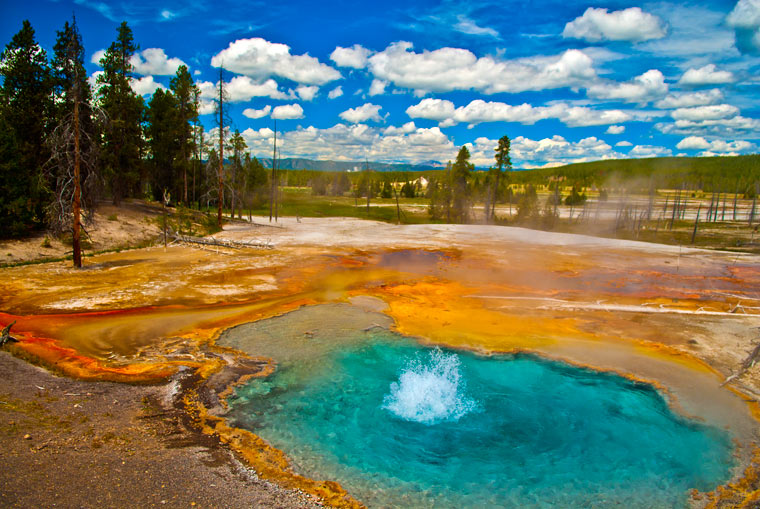 Gejzer w Parku Narodowym Yellowstone
