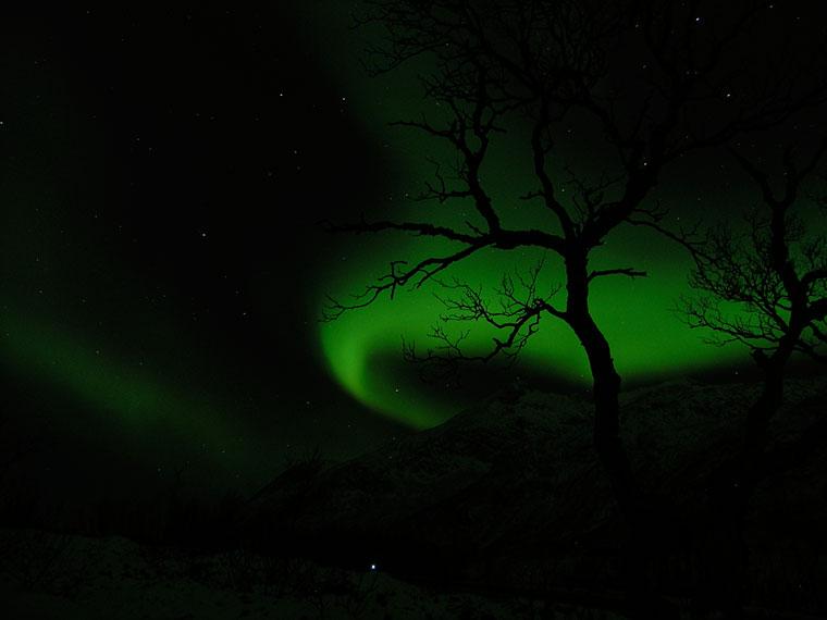 Aurora Borealis - zorza polarna, Tromso, Norwegia