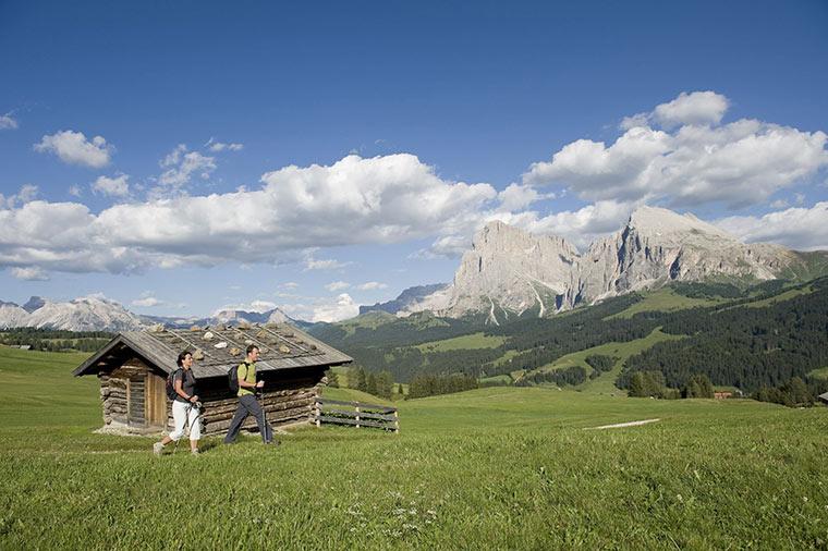 Zimowe sprawy w wersji letniej, Austria